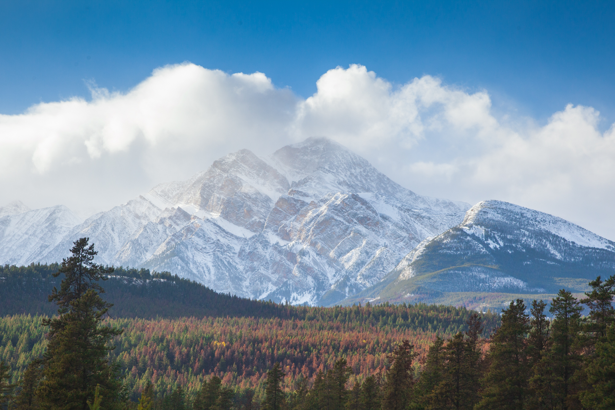 Jasper, AB: The Town of No Elk