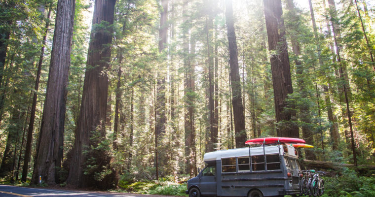 Vanlife Gear That We Can't Live Without: Essentials for Living on the Road