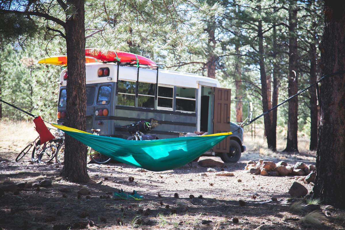 Shultz Pass Road Campsite